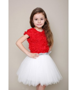 Rochita Julieta, 2-12 ani, Colibri
