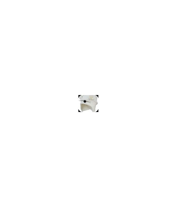 Caciula baiat Soricel, catifea, 3-9 luni, 62-74 cm, Mic Pitic