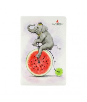 Fruity Scooty Caiet activitati Fruity Scooty Elephant
