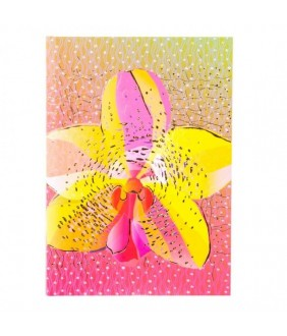 Agenda Goldbuch A5 cu efect special OMG Orhidee