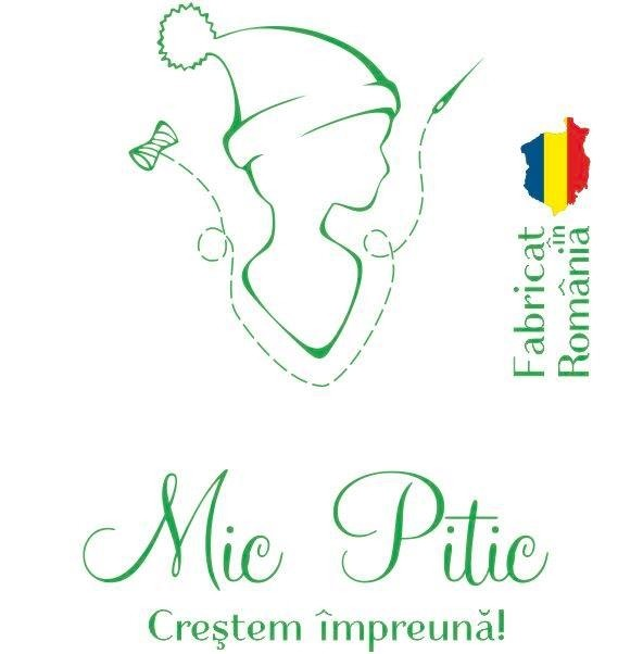 Mic Pitic